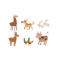 Cute farm animals set rabbit alpaca dog goat vector