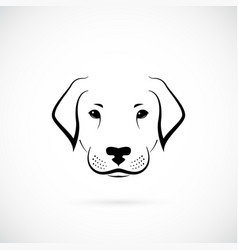 dog labrador on white background design sketch vector image