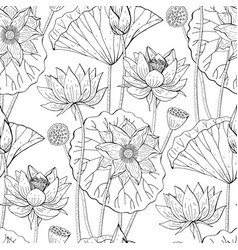 Seamless floral pattern with lotus flowers vector