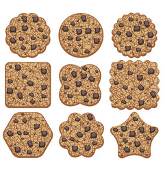 set of chocolate chip cookies of different shapes vector image