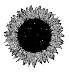 Sunflower background design vector