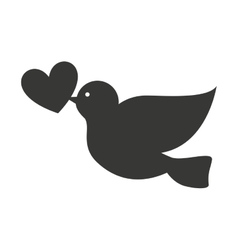 dove with heart isolated icon design vector image