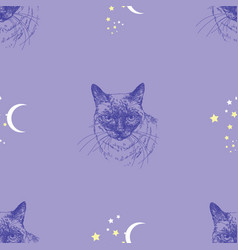 seamless pattern with cat stars and moon on blue vector image