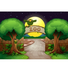 a zoo and owls vector image