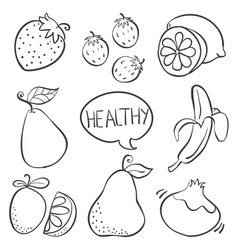 fruit hand draw various doodle vector image