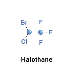 halothane is a general anesthetic vector image