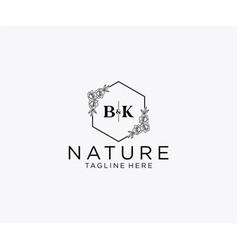 Initial bk letters botanical feminine logo vector