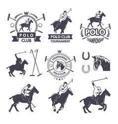 labels set sport competition for polo games vector image