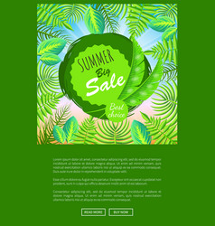 summer big sale round emblem with palm leaves vector image