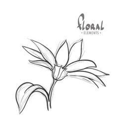 Summer flower on a white background vector
