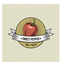 sweet and chili pepper vintage set of labels vector image