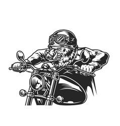 Vintage ferocious wild boar head biker vector