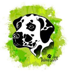 Watercolor image of the head of a dog vector