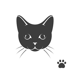 Black kitten with paw print vector image vector image