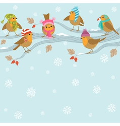 Winter background with funny birds vector image