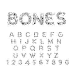 Bones alphabet letters anatomy skeleton font vector