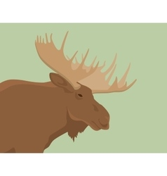 Moose head live view from side vector