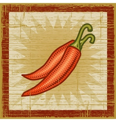 Retro chili pepper vector