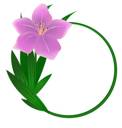 Beautiful round lily flower background vector image vector image