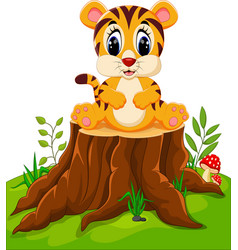cute baby tiger sitting on tree stump vector image vector image