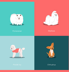 set of dogs different breed vector image