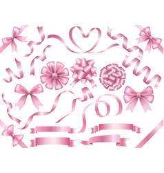 a set assorted pink ribbons vector image