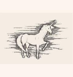 beautiful unicorn wind sketch vector image