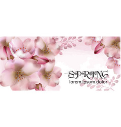 cherry flowers watercolor delicate spring vector image