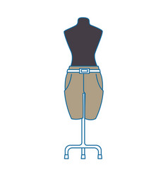 elegant pants for women in manikin vector image