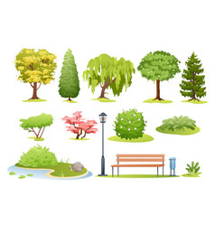 Forest and park trees bushes fern and park bench vector