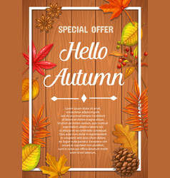 seasonal autumn banner or poster vector image