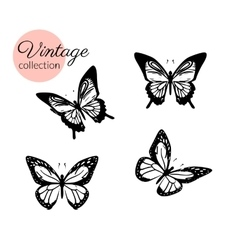 Set of four black and white butterflies silhouette vector image