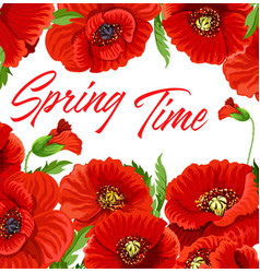 spring time poster with red poppy flowers vector image