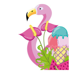 tropical bird flamingo cartoon vector image