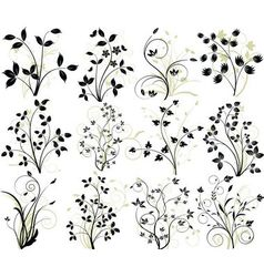vector floral elements vector image