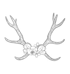 black and white boho deer horns coloring book vector image