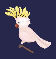 Cockatoo parrot cartoon vector