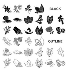 herb and spices black icons in set collection for vector image