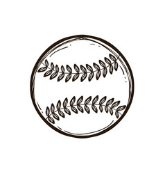 leather baseball ball isolated coloring book vector image