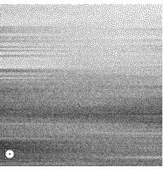 wavy background black white grainy dotwork design vector image