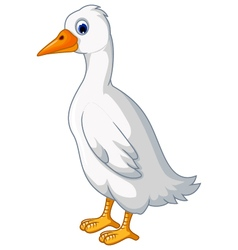 White duck cartoon vector