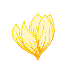 yellow blooming tropical flower hand drawn vector image