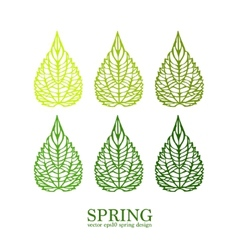 Isolated green leaves minimalistic vector image