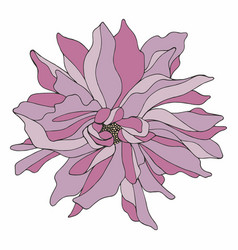 Flower hand drawing vector