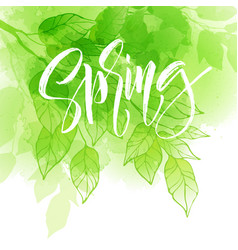 Hand lettering spring design on a green and yellow vector
