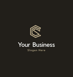 Letter cs cryptpo creative business logo vector
