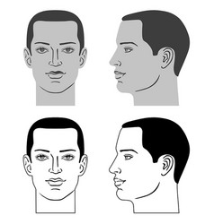 Man hairstyle head vector