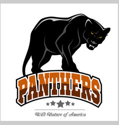 Panthers mascot vector