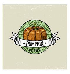 pumpkin vintage set labels emblems or logo vector image