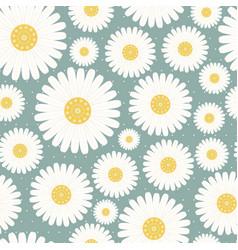 Seamless pattern chamomile vector